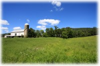 Barn-Amberson